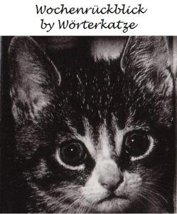 wochenrückblick_by_woerterkatze