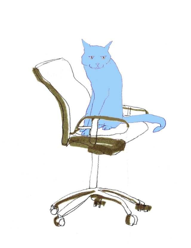 Blaue-Katze-auf-Stuhl